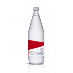 Agua San Aniol 750 cl con gas , pack 15 unidades